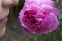 sante-essentielle-nez-rose