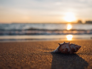 My Day - plage 2