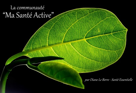 La-communaute-Ma-Sante-Active