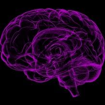 sante-essentielle-biofeedback-cerveau