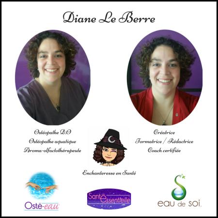 Diane Le Berre - présentation.png