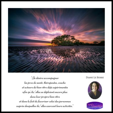 Accompagnement thérapeutes - Diane Le Berre - Santé Essentielle