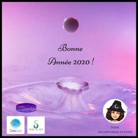 Bonne Année 2020 Oste-eau - Sante Essentielle - Eau de Soi - Diane - Enchanteresse en Sante